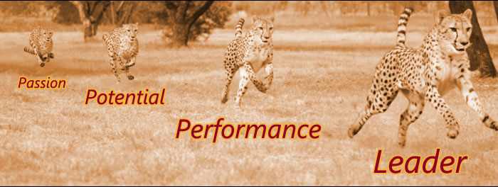 Passion, Potential, Performance, Leader
